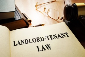 Legal Counsel for Michigan Landlord Tenant Disagreements